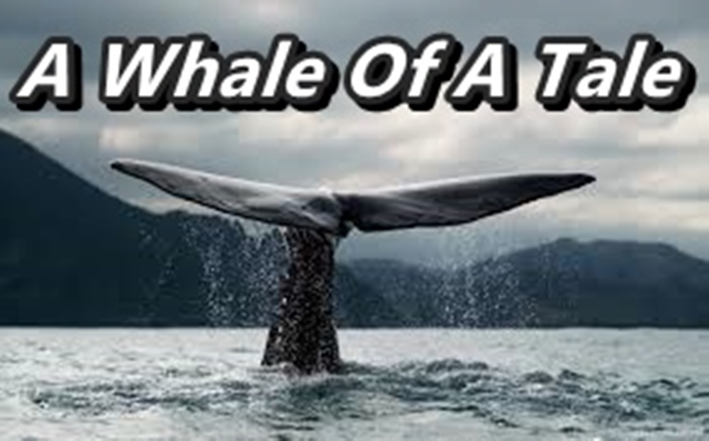 A Whale of a Tale